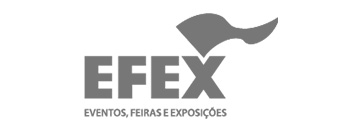 Efex | DHO Consulting