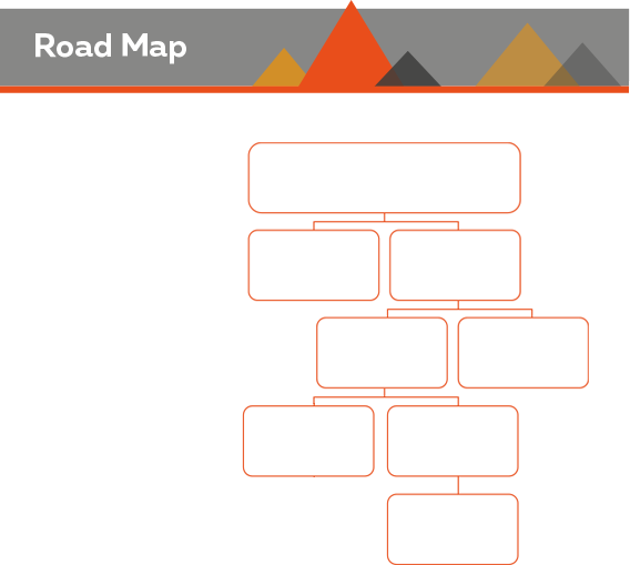 Road map Assessment Individual